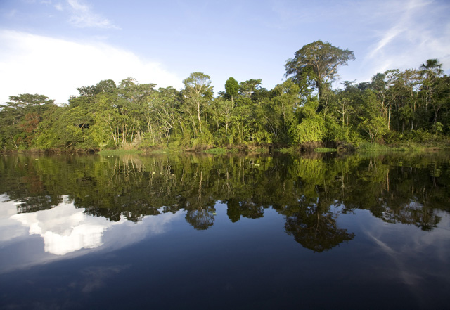 Reserva Nacional Pacaya Samiria – Iquitos  # PA-79